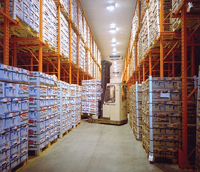 Associate British Ports select Redirack Drive-In Racking for new cold & chill stores